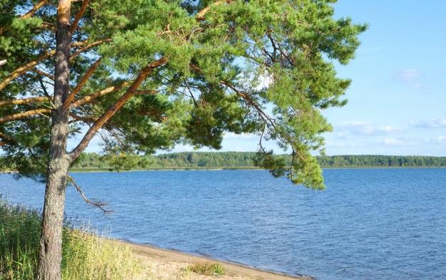Лечение и отдых в Тверской области