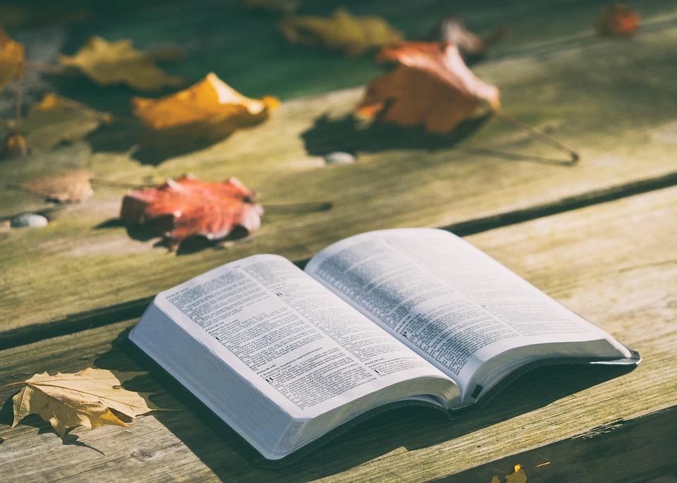 Чтение Библии: вспомогательная литература