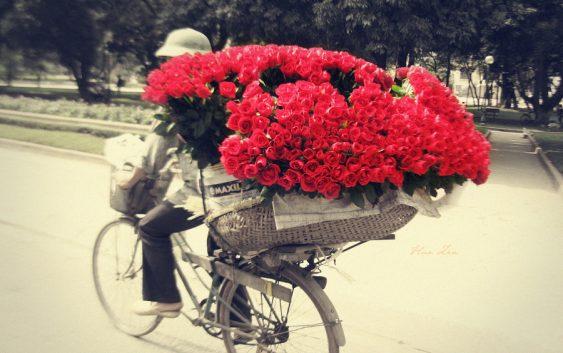 Цветы с доставкой – символ радости