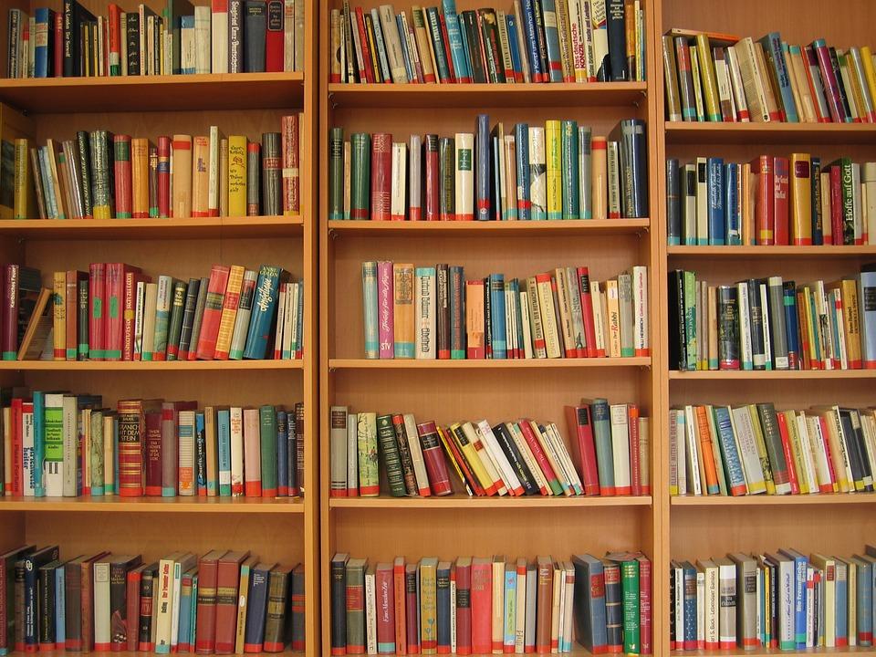 Книжная литература. Покупка и чтение