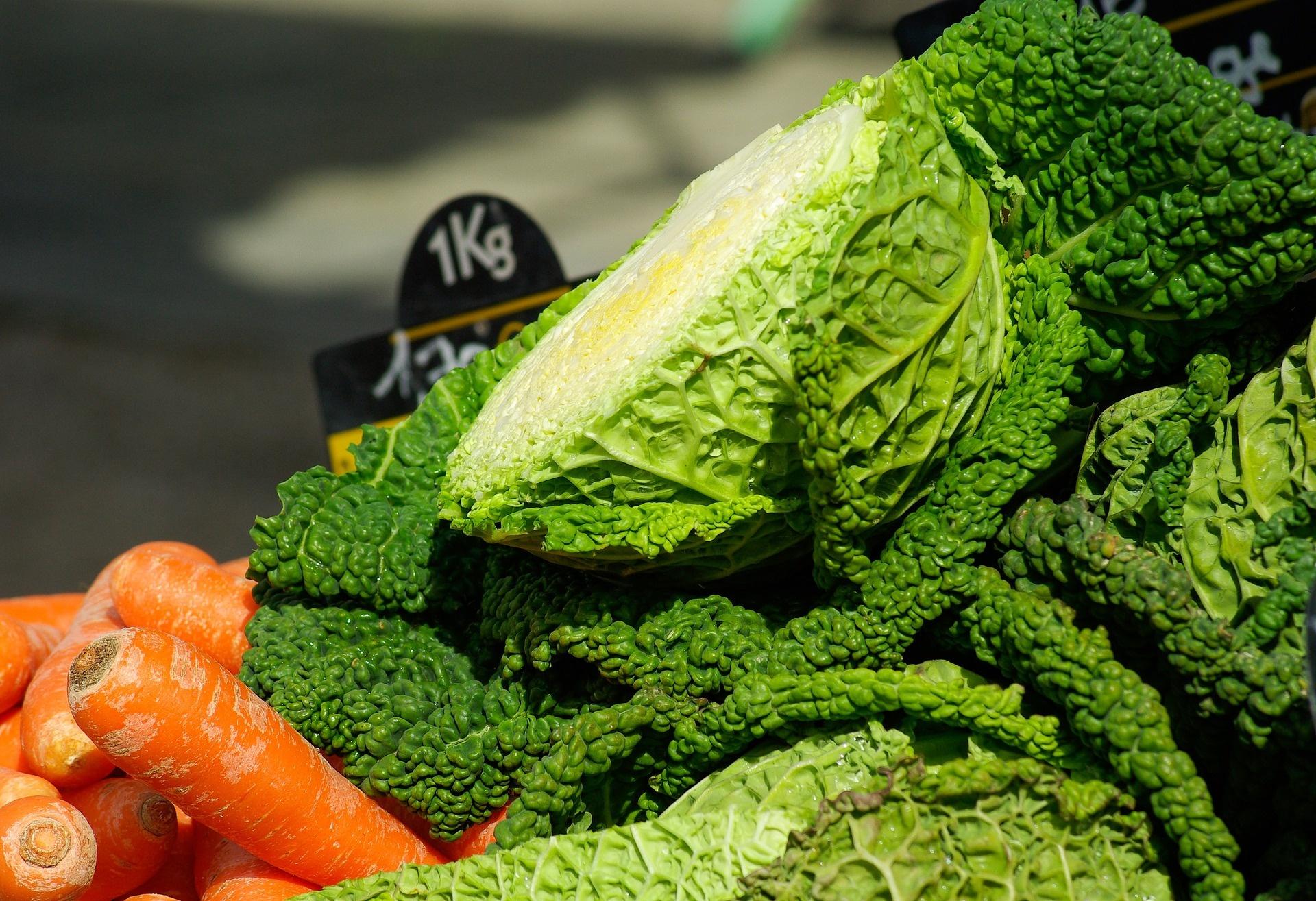 Бесплатная Капустная Диета. Как правильно соблюдать капустную диету, ее варианты с отзывами об эффективности