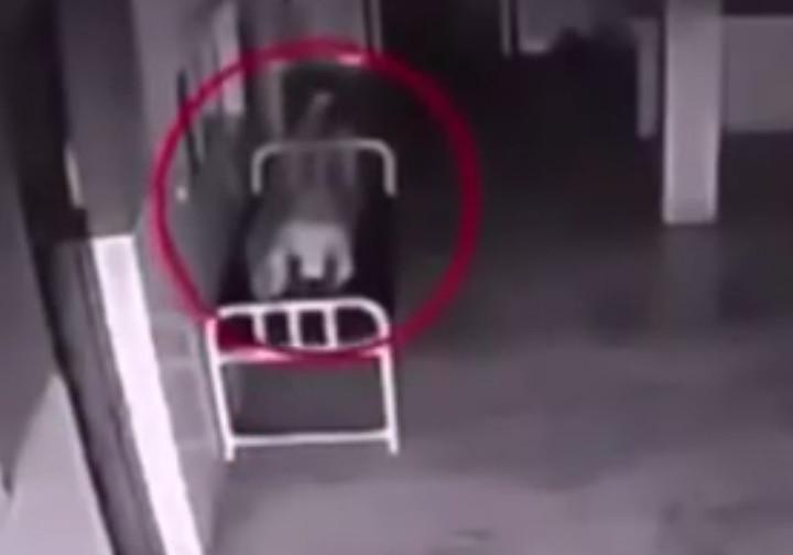 Охота на привидений скрытая камера моему